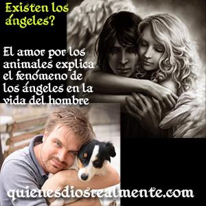 Existen los ángeles? el amor por los animales y la existencia de los ángeles